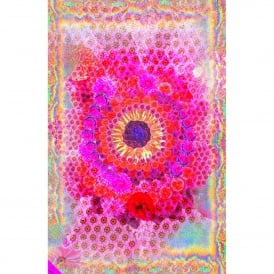 Over The Rainbow Print Modal Blend Scarf in Pink
